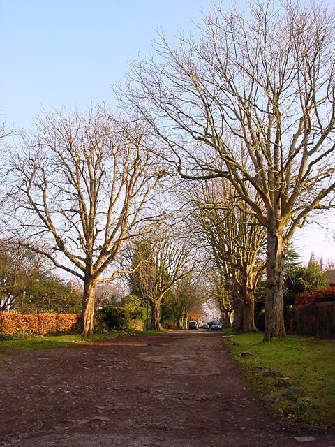 Cheyne Road, Stoke Bishop
