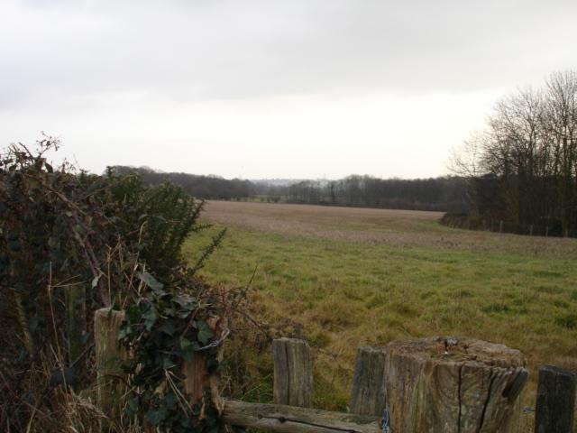 Farmland Nr Bodle Street Green East Sussex