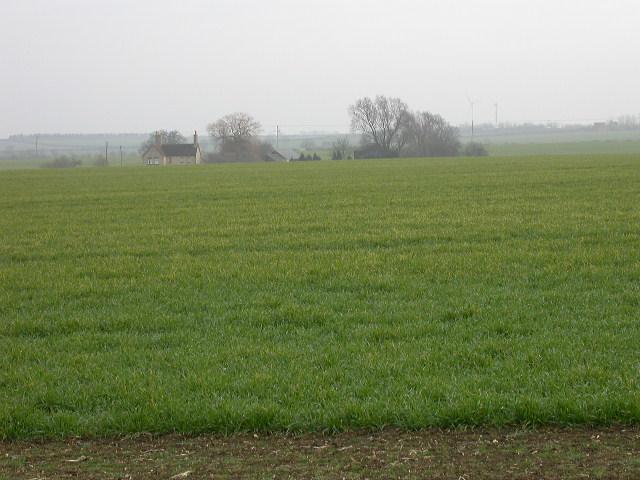 Lower Debden Farm