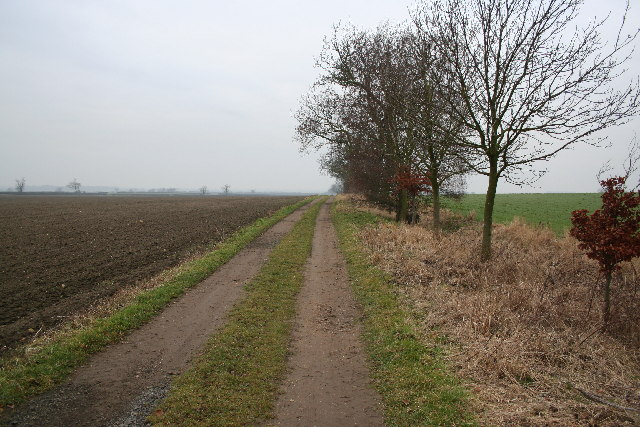 South Carlton Bridleway
