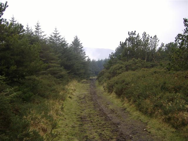 Earystane plantation, Isle of Man