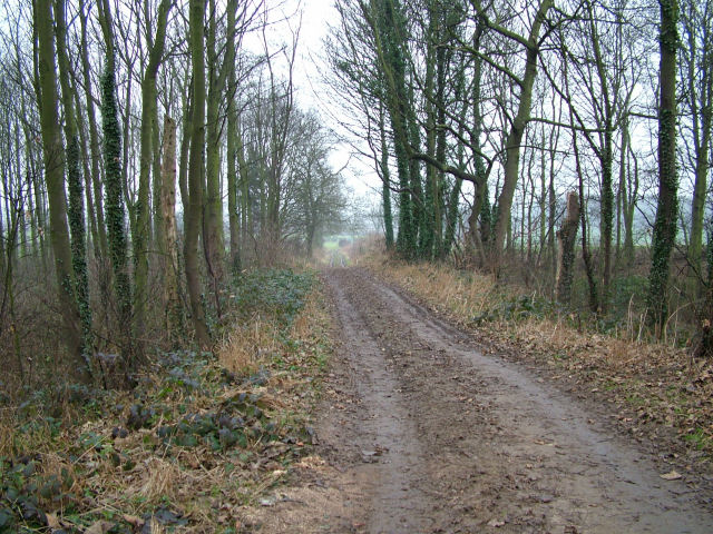 Looking North on farm track at Lound Hill
