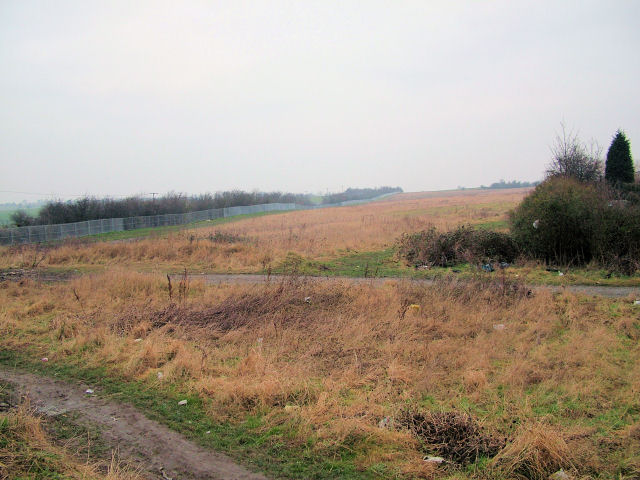 Field next to housing estate.
