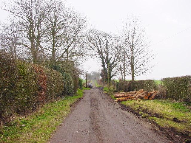 Bridleway at Bow