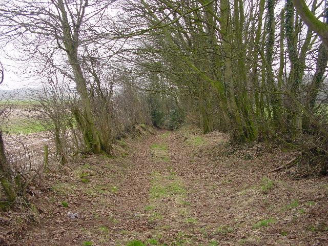 Footpath at Thurstonfield