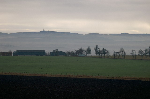 A926 to Westmuir, looking across farmland to the Sidlaws.