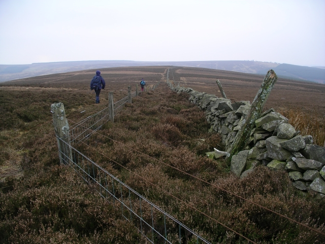 Fence and Wall, Lammer Law