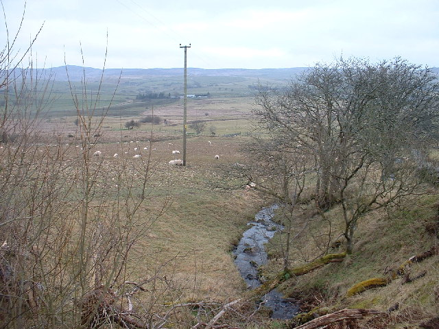 Tributary of the Merddwr