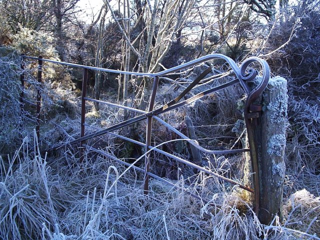 A Frosted Gate