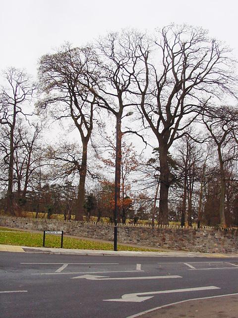 Charlton Road, Southmead
