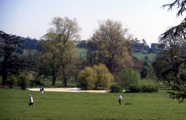 Killerton Parkland