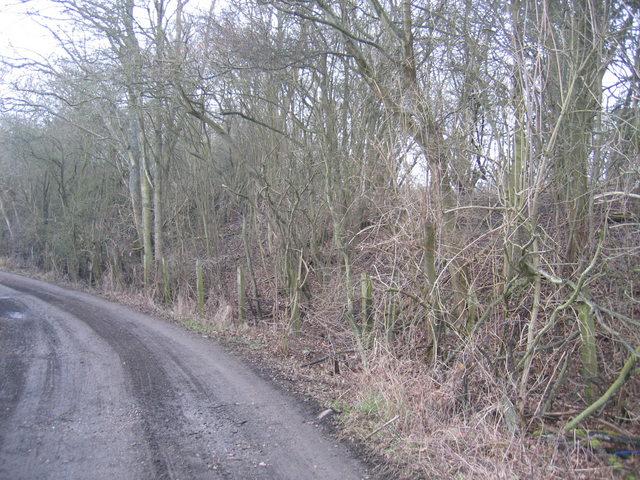 Old railway fencing