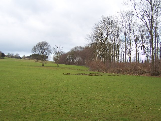 Southern part of Winksley Plantation
