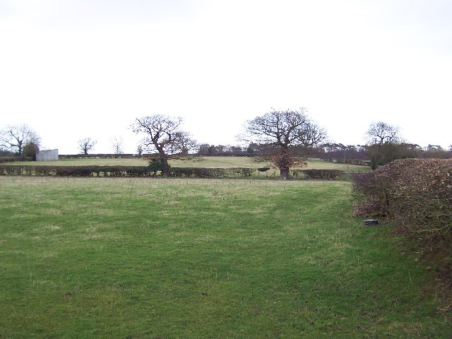 Countryside East of Sawley