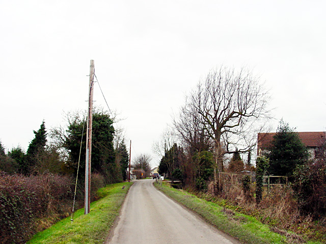 Road by Brook Farm