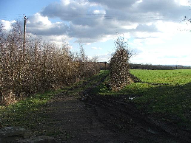 Footpath to Kirkhamgate.