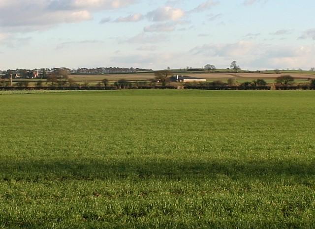 Henge Site, near Nunwick