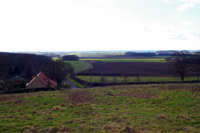 Looking towards Catholic Moor Screed, Somerby