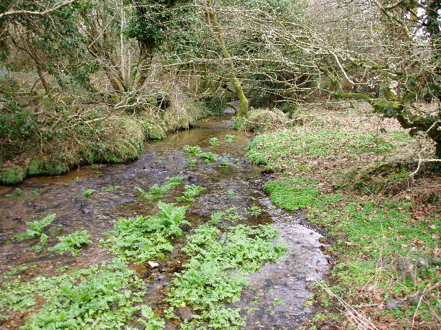 Rosemorran Stream