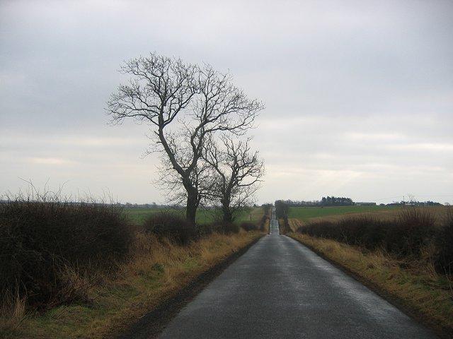 Gavinton, the long straight road.