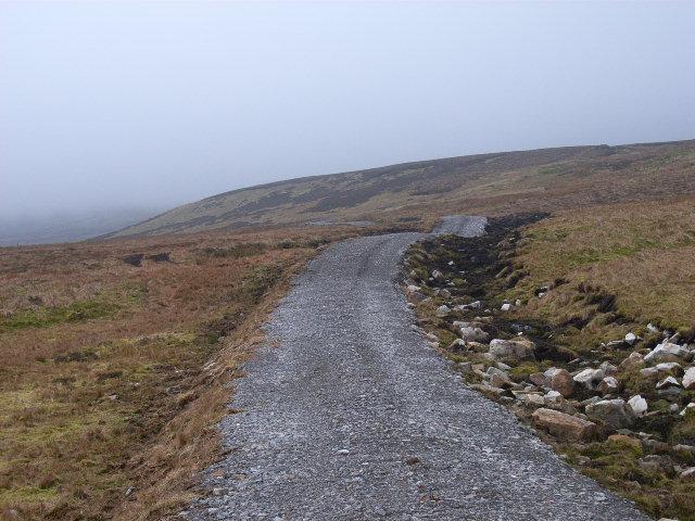 Wellhope Moor
