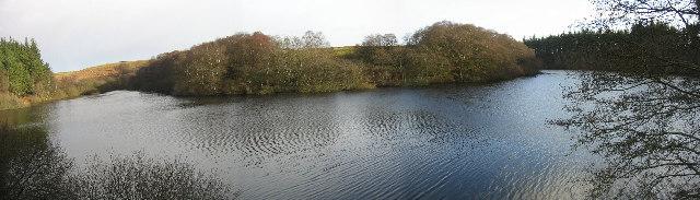 Fontburn Reservoir, western end near Harwood Forest