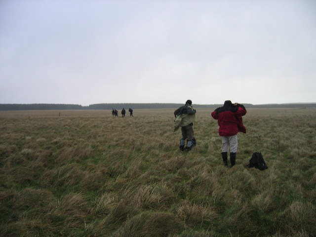 Moorland approaching Harwood Forest and Greenleighton