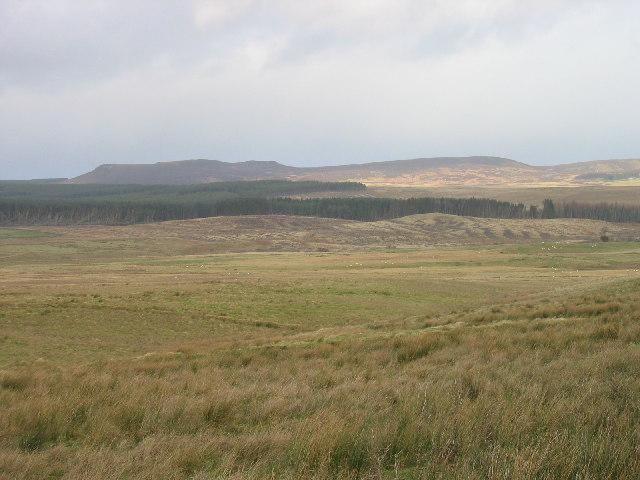 Moorland near Fontburn Reservoir