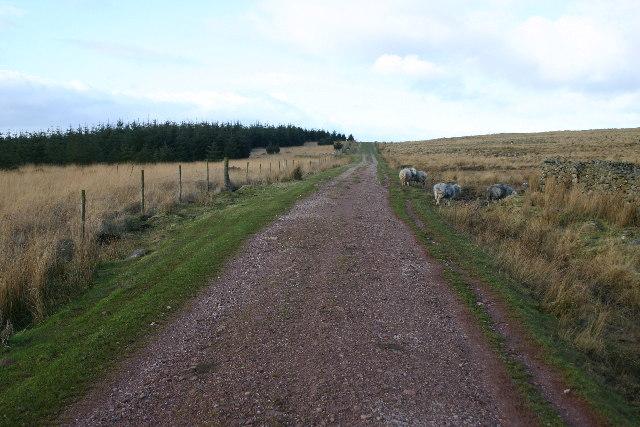 Bridleway to Blengdale
