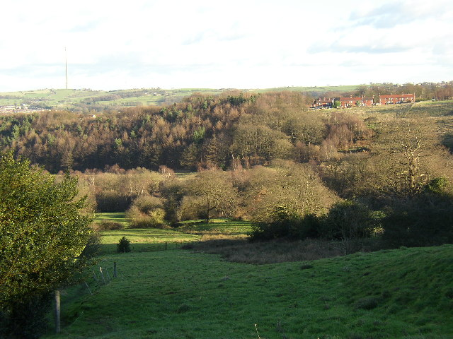 Range Dike valley, Farnley Tyas, Yorkshire
