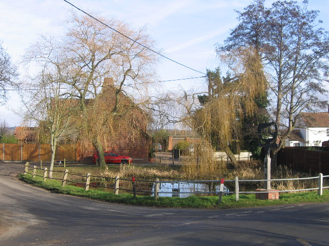 Surlingham Village Pond