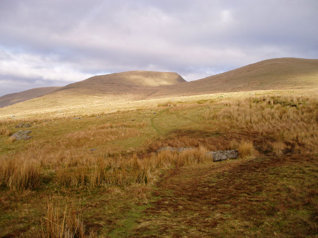 Slopes of Foel Goch and Moel Cynghorion