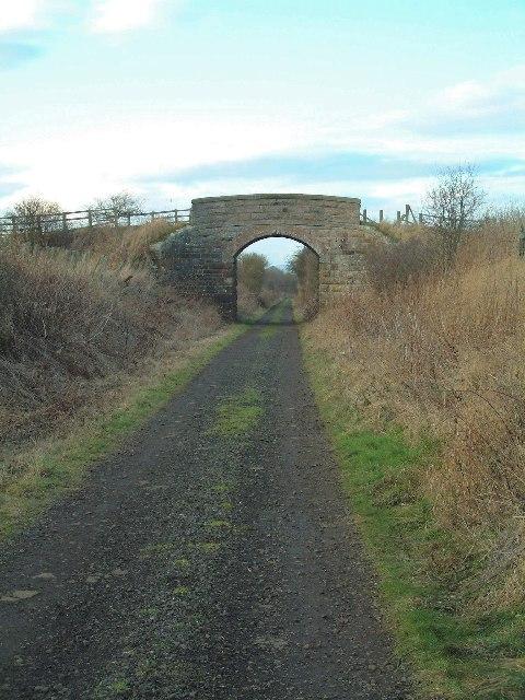 Redundant bridge
