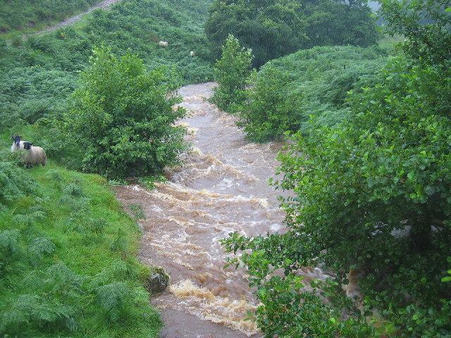 River Beamish near Linhope