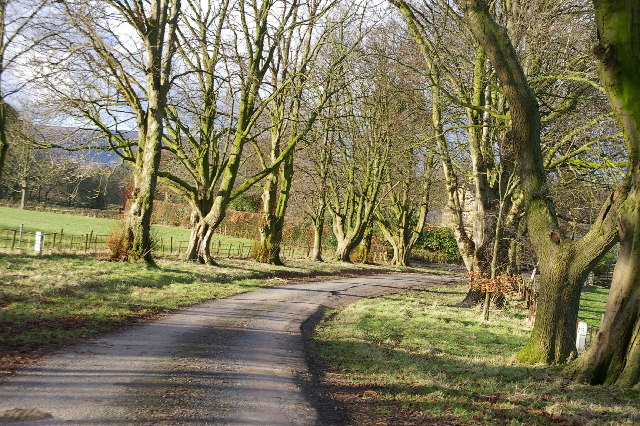 Driveway leading to Chadswell House