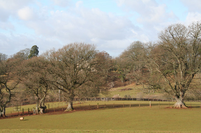 Hatherleigh: towards Strawbridge