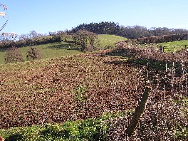 Farmland near Hope Mansell