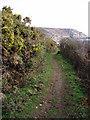 SW4222 : Coast path near St Loy by Sheila Russell