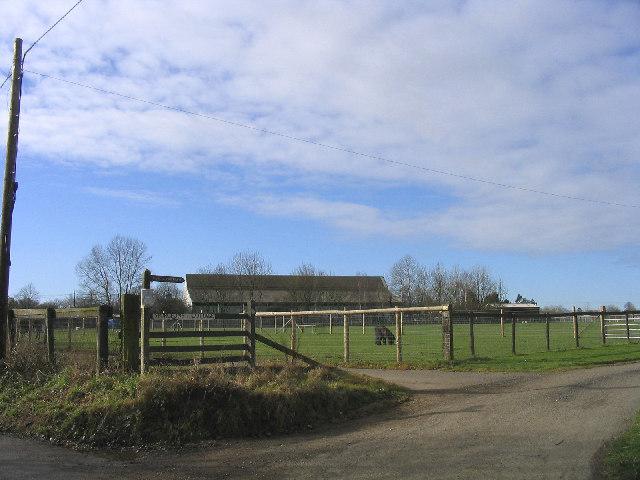 Sturgeon's Farm near Writtle