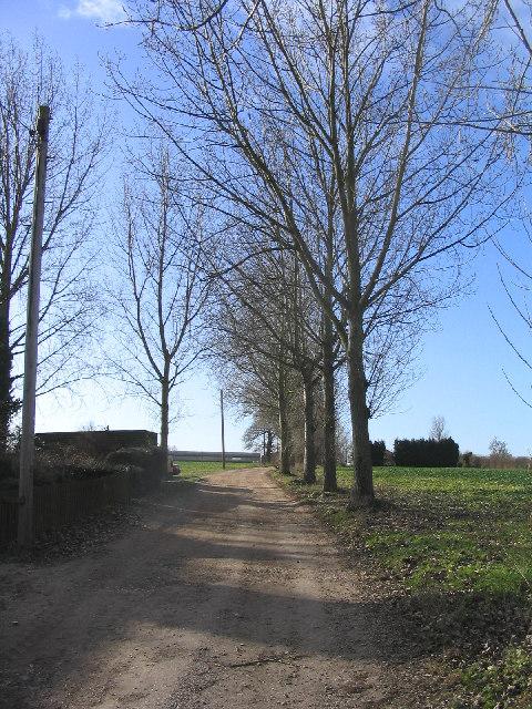 Driveway to Moor Hall, Newney Green