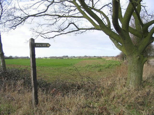 Bridleway (green lane?)