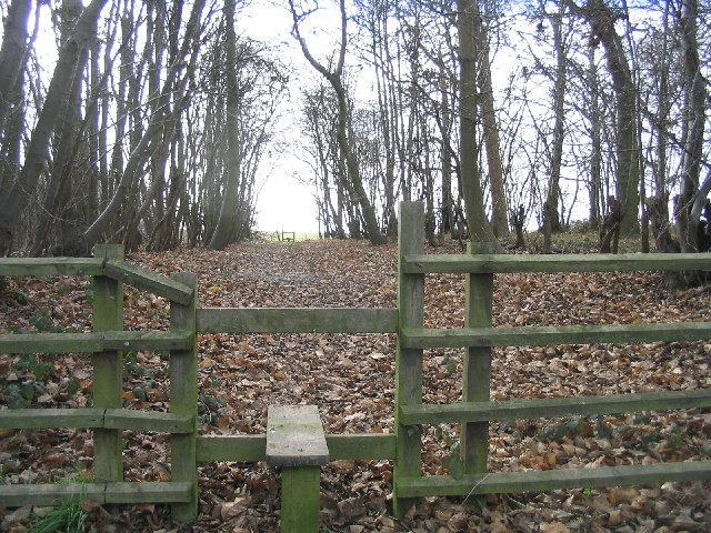 Stiles and footpath through Edney Wood