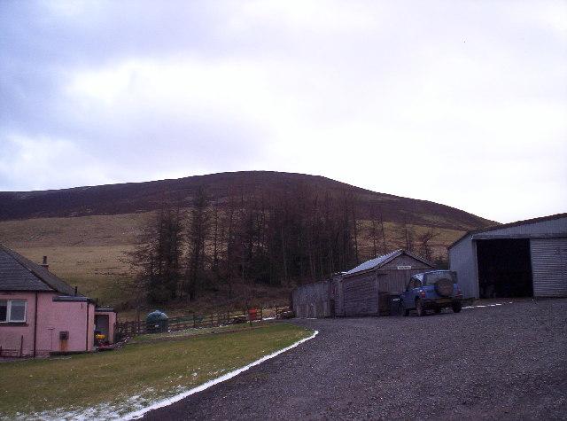 Pink Cottage and Broom Craig