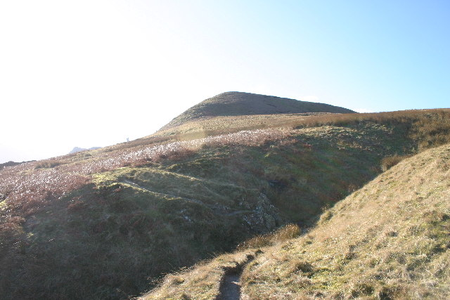 Common Fell