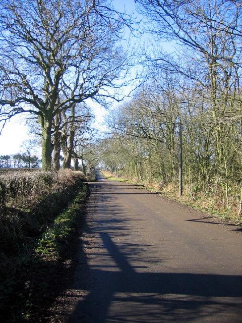 Road west of Kirkley West Farm