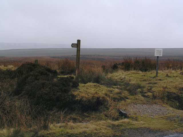 Bridleway to Rosedale from Loose Howe