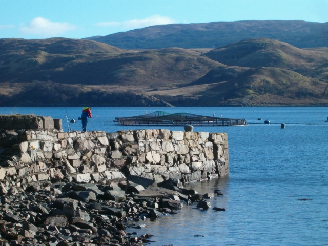 Fishing off Crarae Pier