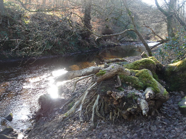 Eagley Brook