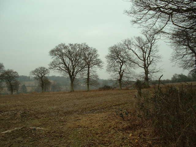 Near Bailing Hill