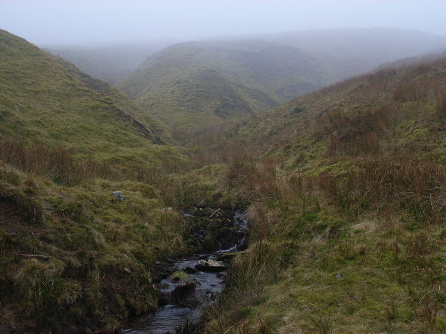 Backstone Burn